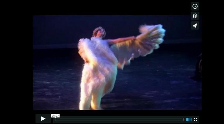 VIDEO-FANS